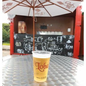 Novidade! Cervejaria Loba lança seu primeiro festival cheio de música e cerveja boa